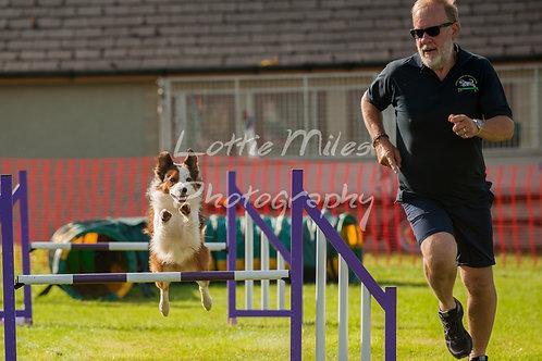 Dartmoor DTS Merton Show-15
