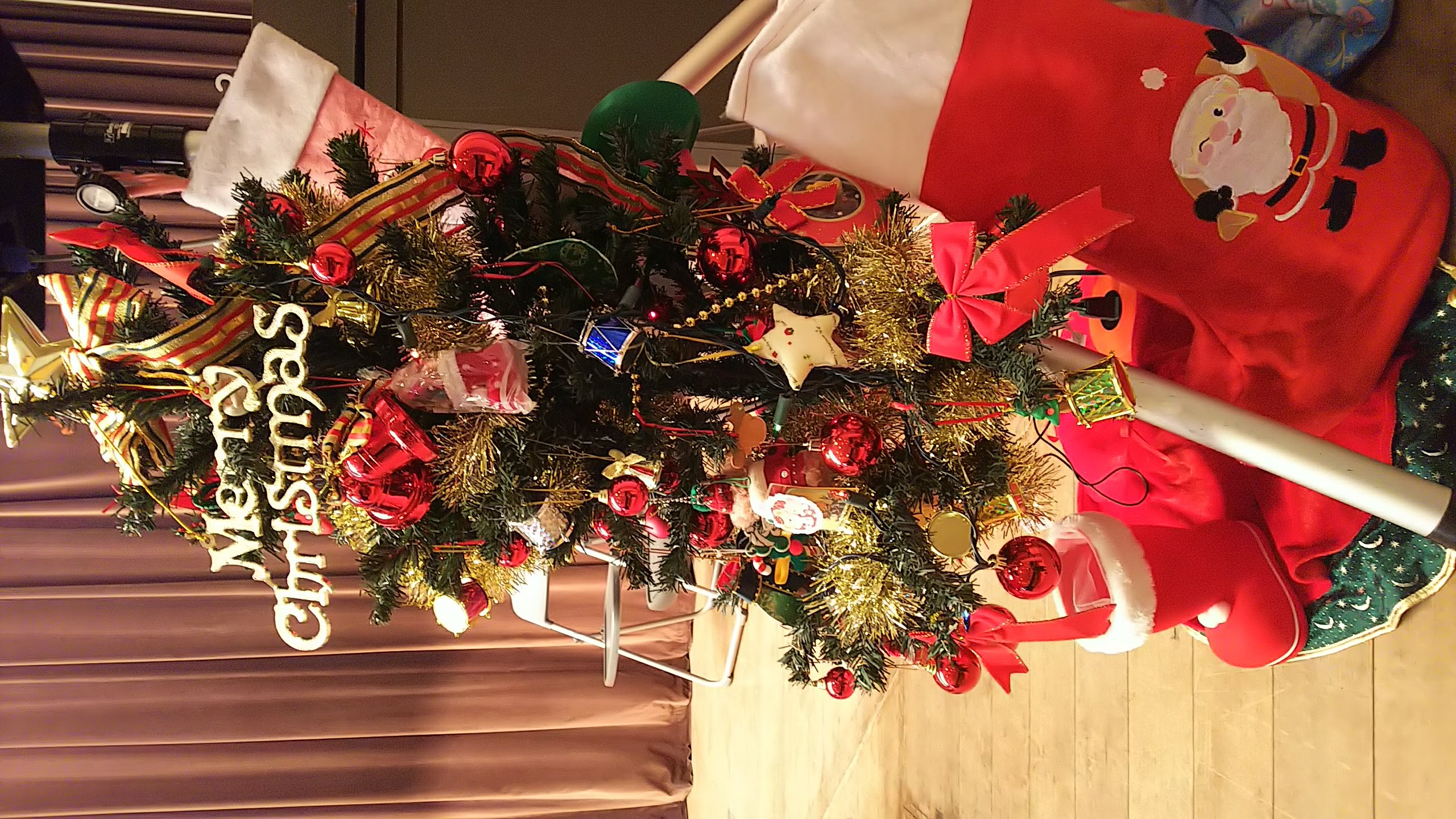 保護者の方が持ってきてくださったクリスマスツリー