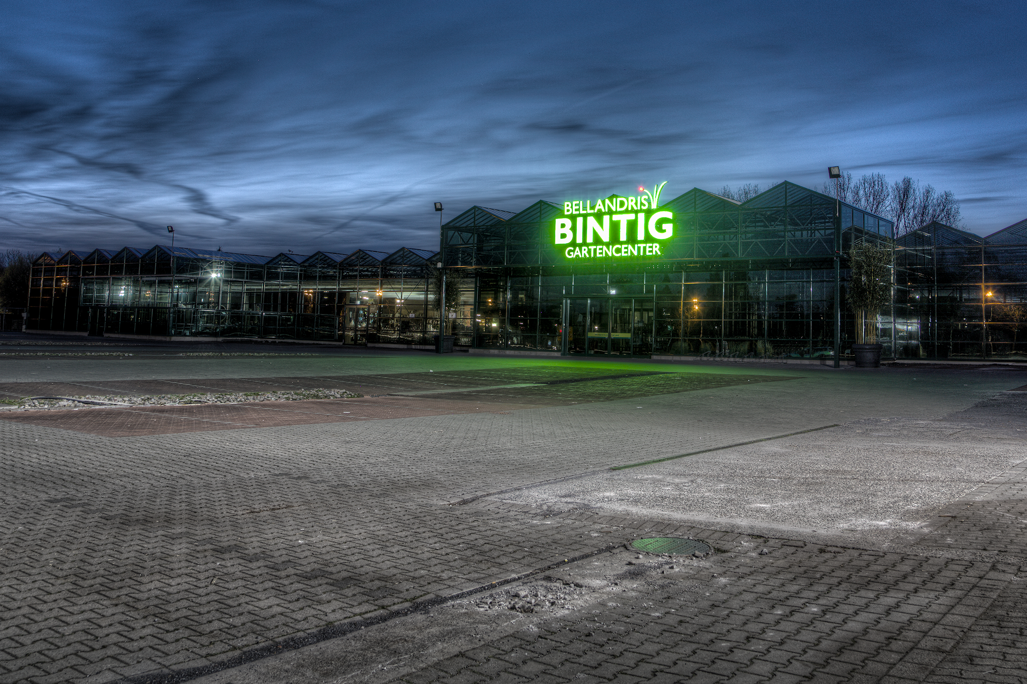 bintig1.png