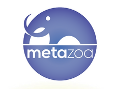 Metazoa.png