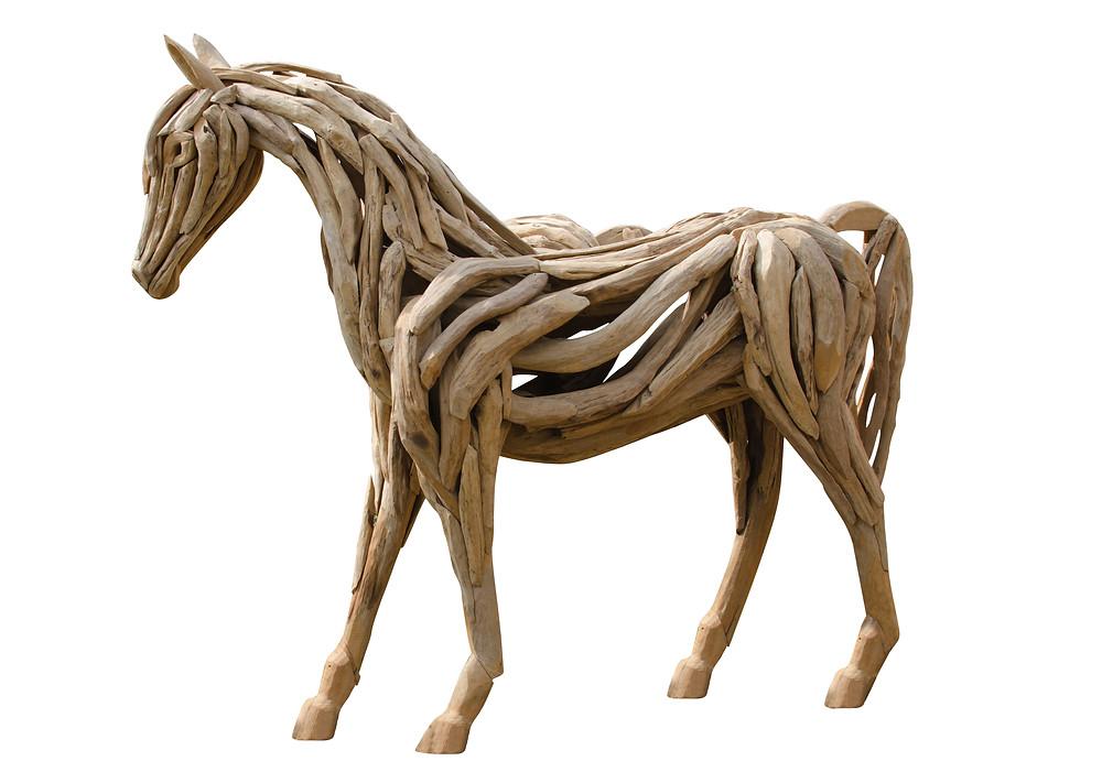 Vinkkejä hevosen anatomian opiskeluun