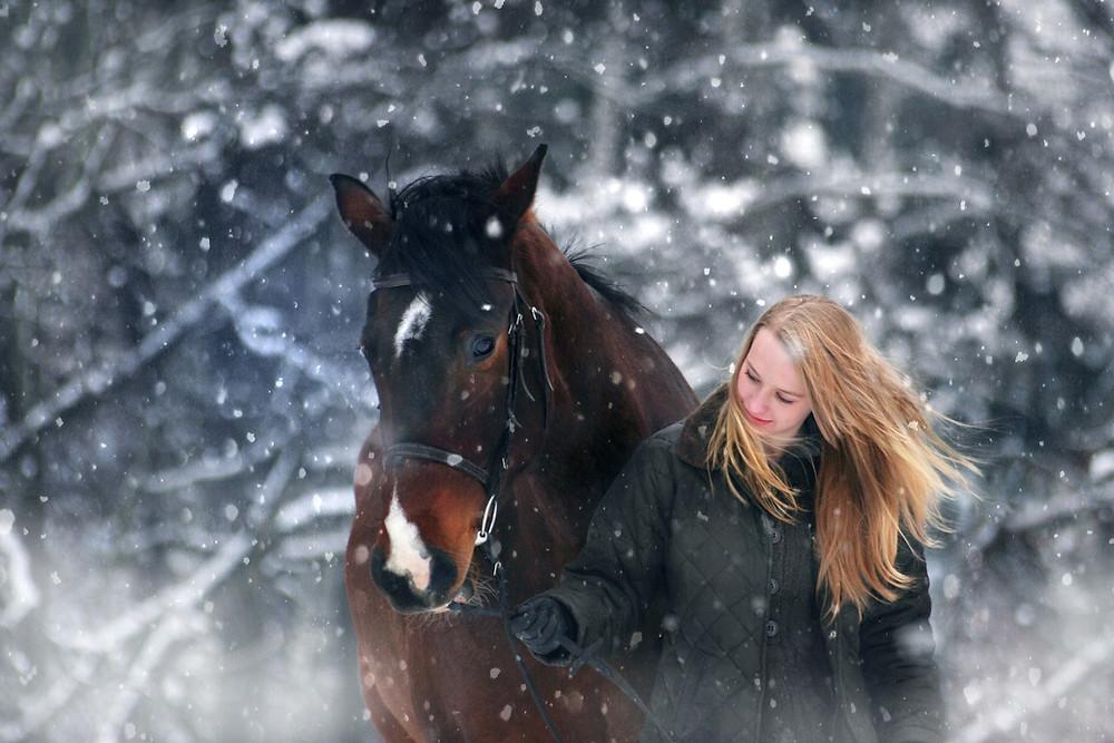 Ole täydellinen asiakas hevoshierojalle