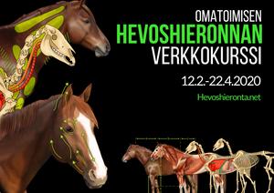 Hevoshieronnan verkkokurssi 2020