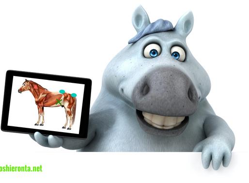 E-kirjoja hevoshieronnasta