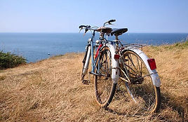 studio blu inc, bikes at the beach,