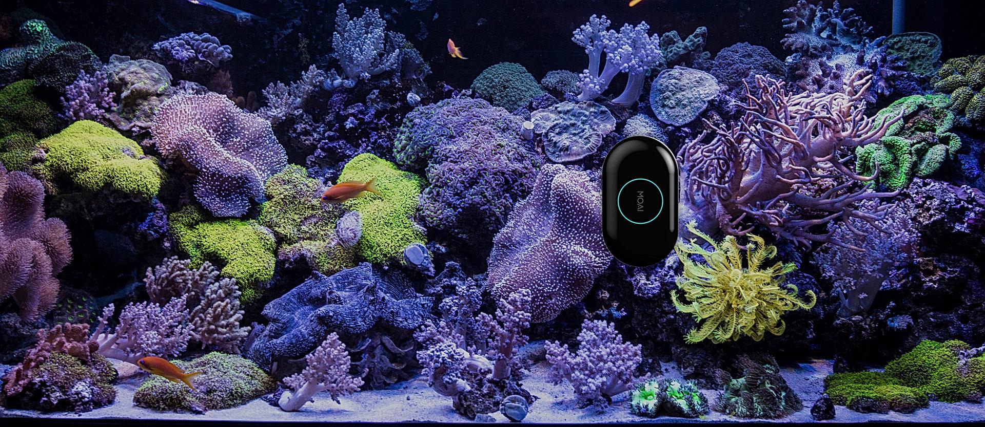 MOAI Aquarium Robot Cleaner Camera