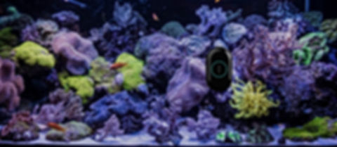 MOAI Aquarium Robot Cleaner Camera