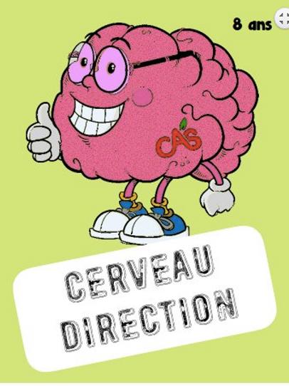 Cartes CERVEAU DIRECTION