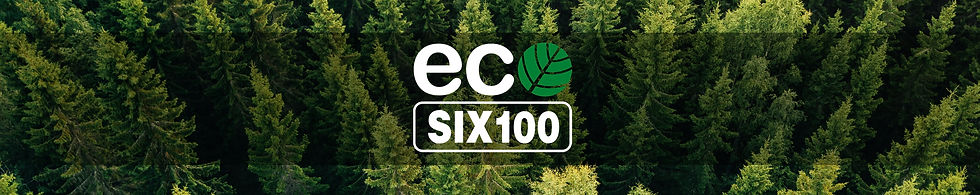 ECO_Six_Web-band.JPG
