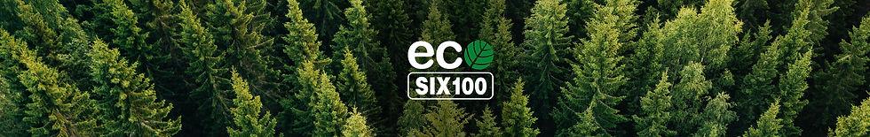 ECO_Six_Web-band_long.JPG