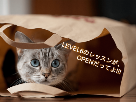 【New レッスン】Level.6 解禁!!