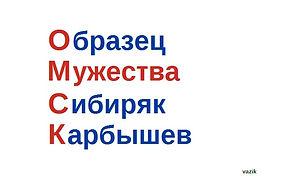 Символ Омска Карбышев