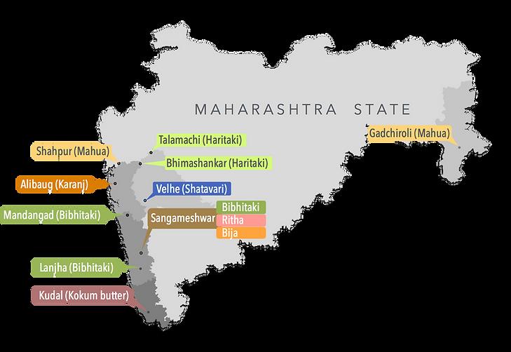 MAHARAHSTRA VC MAP.png