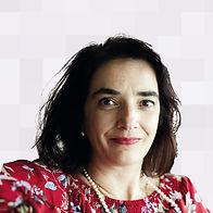 Elvira Fortunato - Hover.jpg