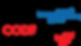 CfAFRICA _ Branding _ Logo _ Full-Transp