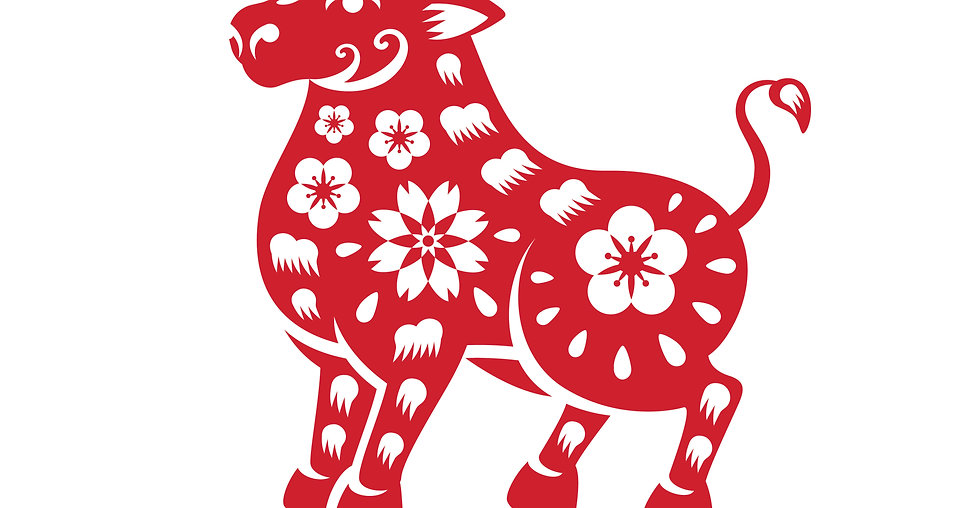"""Feng Shui Astrology Chart for 2021 """"The Year of the Metal OX"""""""