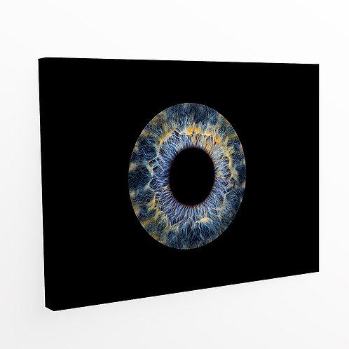 Iris Fotografie, Iris Foto, eine Person, Leinwand, Berger Roger Photography, Fotoshooting
