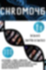 Chromo Official Poster FINAL - RZD.jpg
