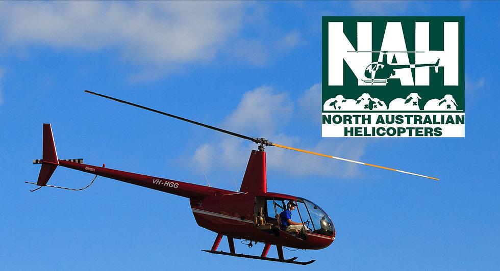 Helicopter_edited.jpg