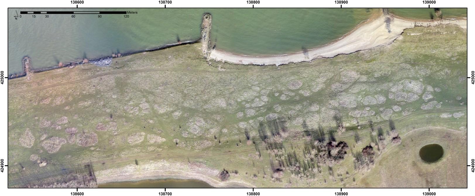February Vegetation Drones UAVs.jpg