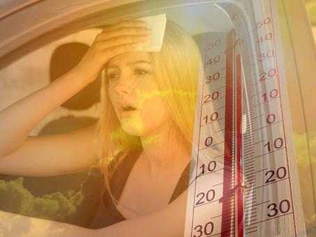 Come Sopravvivere al Caldo Record