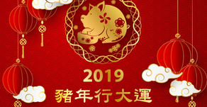 Dr. Wells 新春祝賀 - 2019 豬年行大運