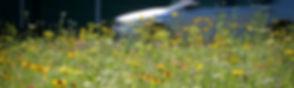 smogowka_poziome.jpg
