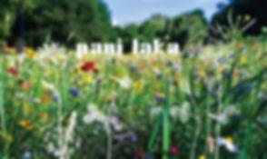 thumbnail_laka-baner.jpg