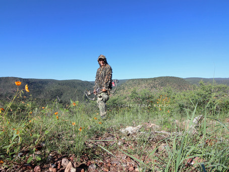 THE GRAY GHOST – My Back Country Archery Coues Deer Hunt