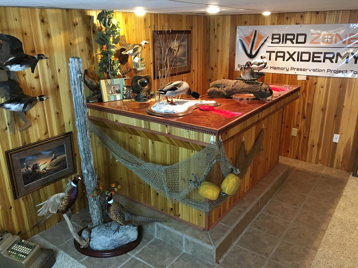 Show Room Bird Zone Taxidermy Neenah WI