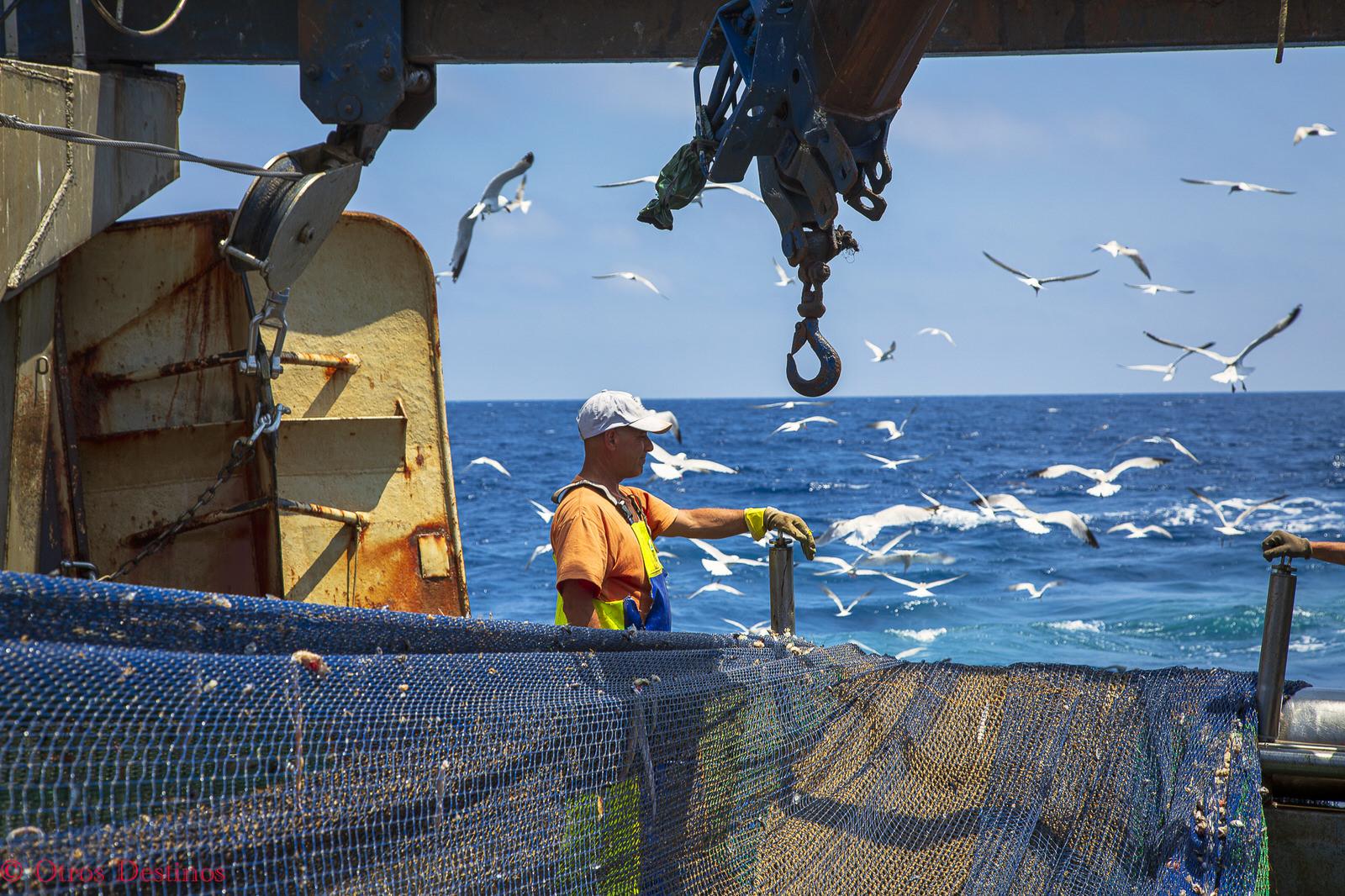 Un día de Pesca en Castellón