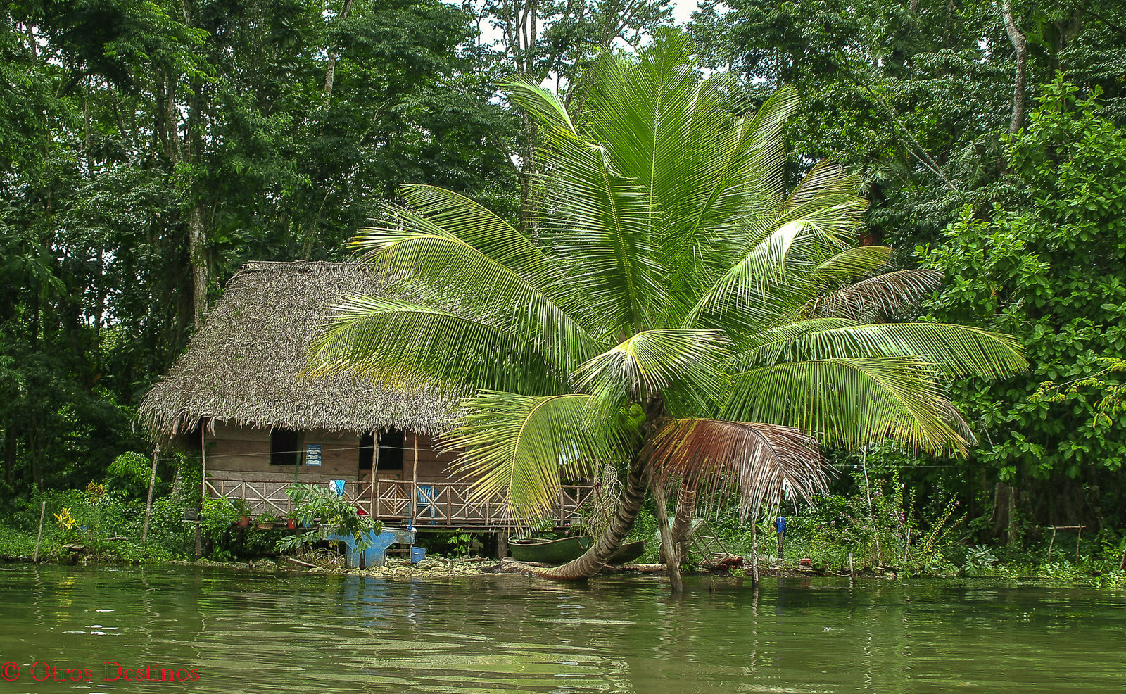 Rio dulce, Livingston y Tikal