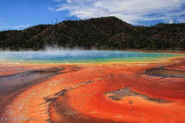 Yellowstone: Contiene cerca de 10.00