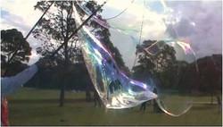 Giant Bubble Party Photos