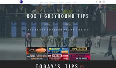 Box 1 Greyhounds