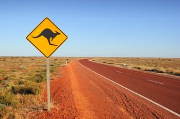 Kangaroo traffic sign.jpg