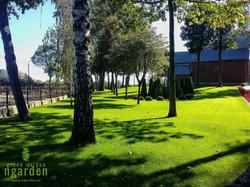 Trawnik przy kościele w Sędzinie