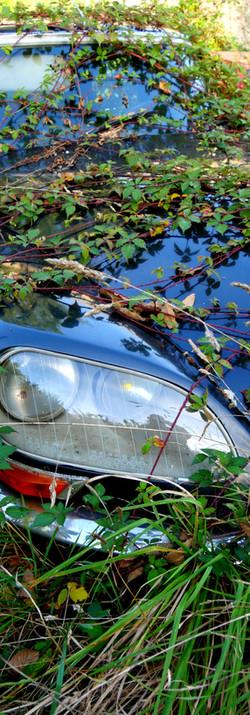 DS Citroën