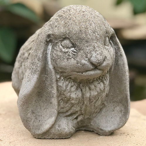 Bunny with lop ears