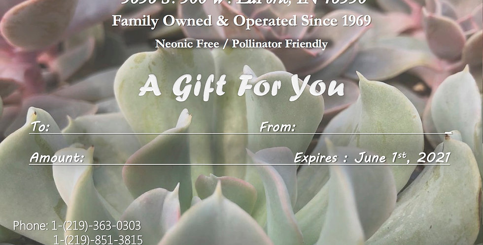 Gift Card (Succulent Theme)