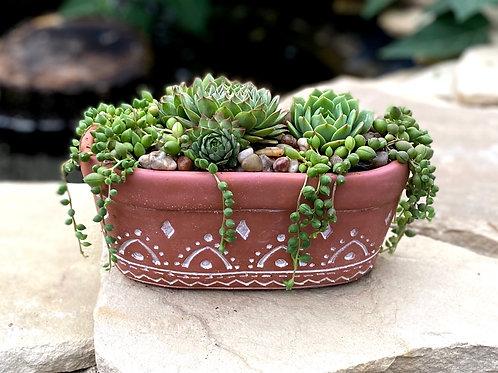 "Oval terra cotta succulent planter. 4.5"" T x 9"" L"