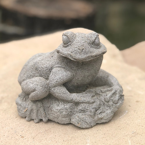 Concrete frog on lily pad