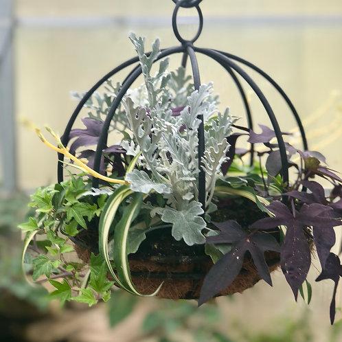 Hanging orb foliage planter
