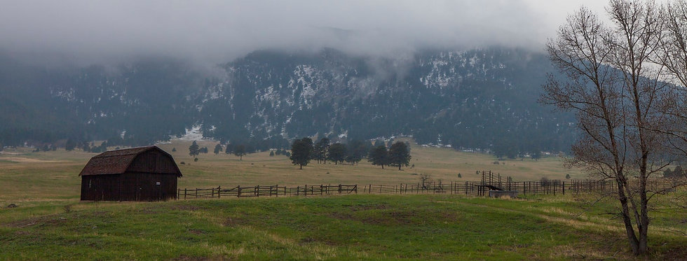 Elk Meadow Open Space Park in Evergreen, Colorado