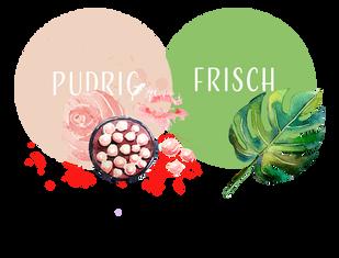 pudrig-frisch.png
