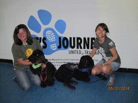 First Biscay Barbet Canine Assisted Intervention for PTSD