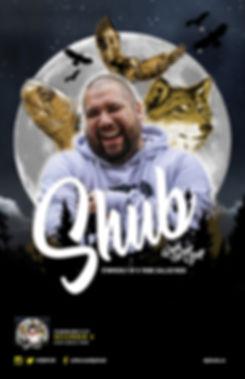 DJ Shub SOLO Poster.jpg
