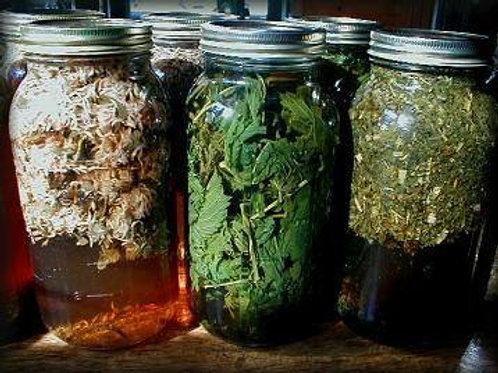 Herbal Tincture Class