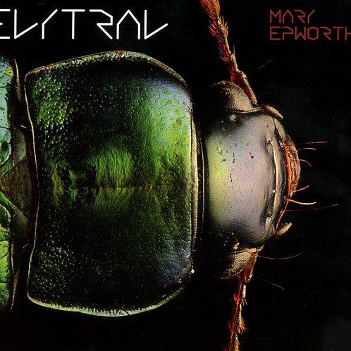 MARY EPWORTH - ELYTRAL