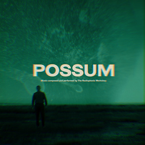 THE RADIOPHONIC WORKSHOP - POSSUM OST (RSD21)